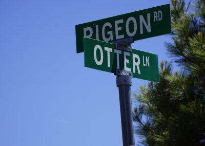 Otter Lane (1)