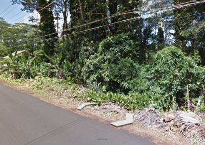 Google Earth4